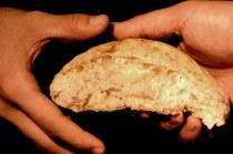 sharing_bread
