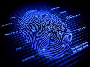 Fingerprint_Apple