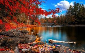 Autumn_Color_Lake