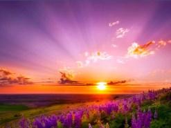 Helen_Keller_Sunrise