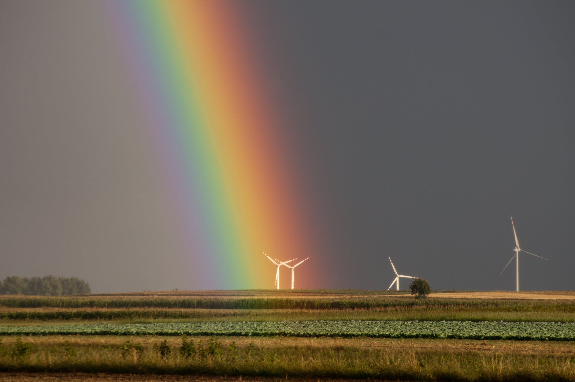 landscape photography of field with wind mill with rainbow